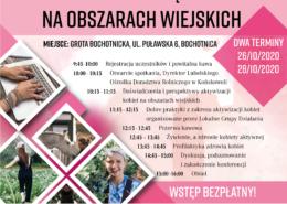 Plakat Kobieta Przedsiębiorczaiorcza